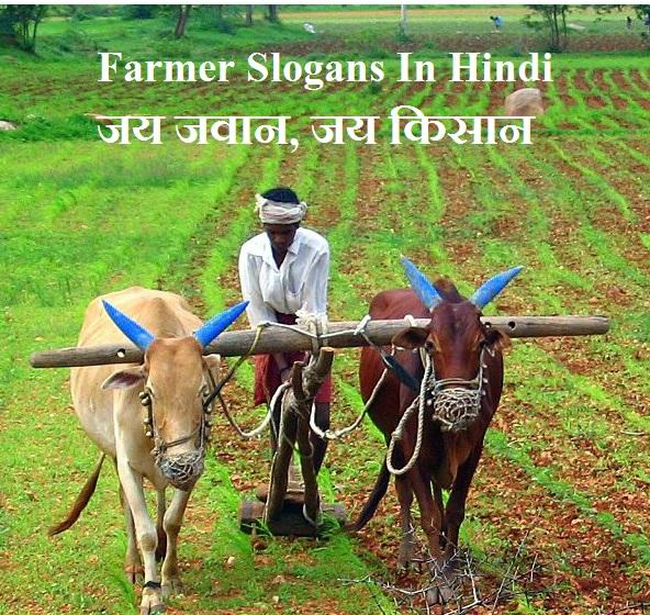 किसान पर स्लोगन, Best Farmer Slogans In Hindi, Kisan par nare, best slogan farmer hindi, slogans in hindi, hindi slogan on farmer hindi, kisaan par nare
