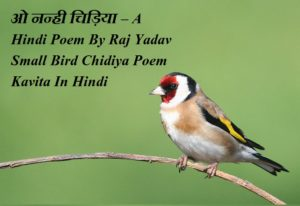 ओ नन्ही चिड़िया , A Hindi Poem By ,Raj Yadav ,Small Bird Chidiya Poem Kavita In Hindi