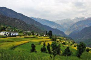 My Village Best Poem In Hindi ,गाँव का आँगन हिंदी कविता, Gaanv
