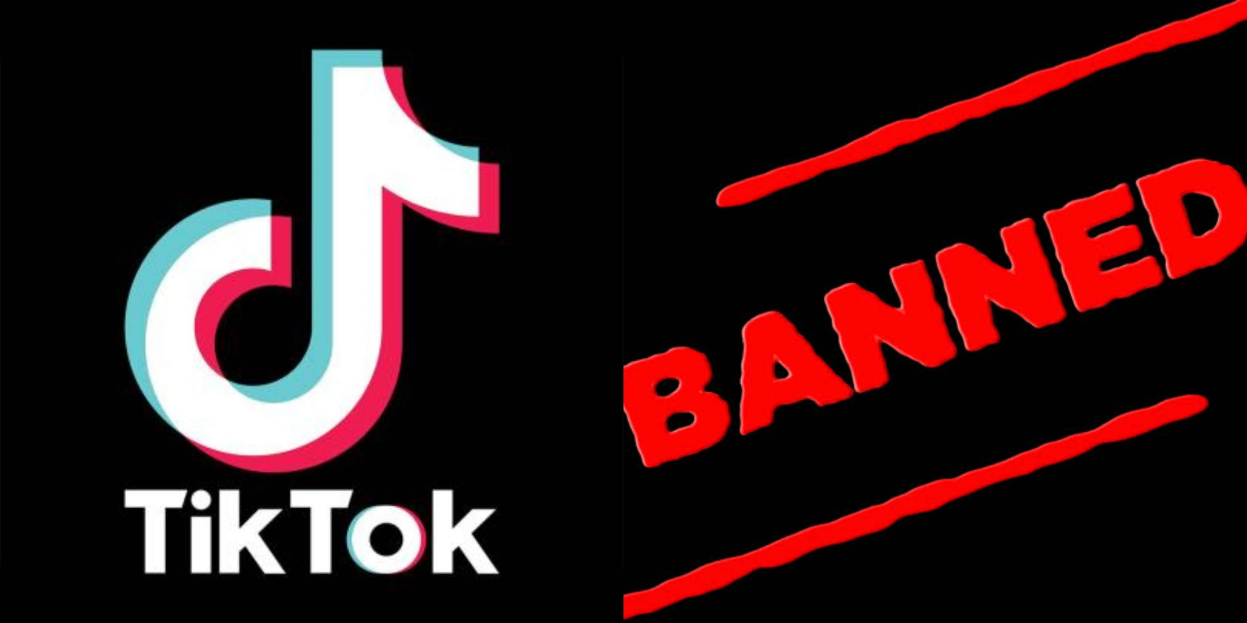 टिकटॉक पर लगा बैन, Tiktok Banned In India, Tiktok par laga ban, nayichetana.com, ban chinese mobile application in hindi, tiktok news in hindi, ban tiktok , Is TikTok banned,