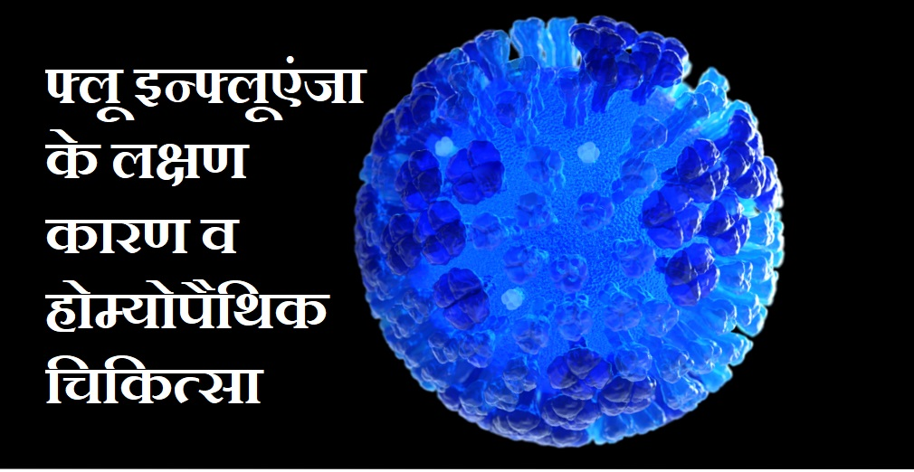 फ्लू इन्फ्लूएंजा के लक्षण कारण व होम्योपैथिक चिकित्सा, Influenza Flu Symptoms Causes Upay In Hindi,flu influenza Ke Karan, flu influenza Ke Lakshan, flu influenza Ka ilaj, flu influenza Ki Dawa, flu influenza Ka Upchar,www.nayichetana.com