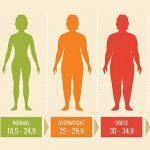बॉडी मास इंडेक्स से वजन कम है या ज्यादा यह कैसे जाने, How To Check Your Body Mass Index In Hindi, BMI Calculator me weight kaise check kare