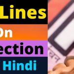 चुनाव का महत्व पर 10 वाक्य,10 Lines On Election in Hindi,chunav par 10 line,election importance essay in hindi,vote par 10 lines,voting essay