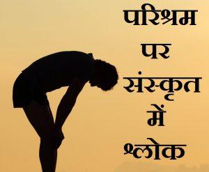परिश्रम पर संस्कृत में श्लोक, Sanskrit Shlok on hard work in hindi,mehnat par sanskrit shlok,kathin parishram par sanskrit shlok